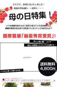mailmagazine01